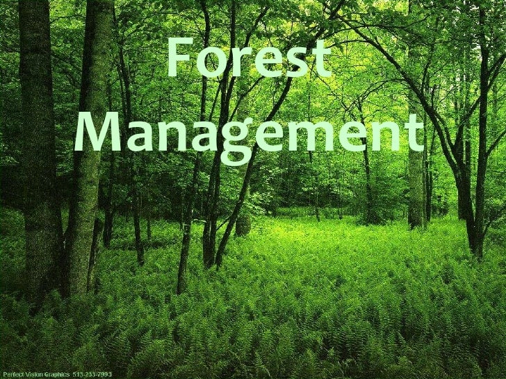 Forest Management | Notes of Forestry for IFoS Mains