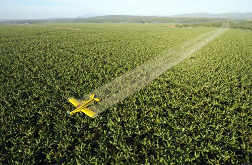 Key for More Sustainable Agro-Chemicals