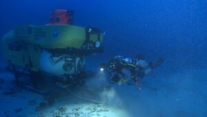 Botanists discover hundreds of species of fungi in deep coral ecosystems