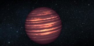 Milky Way could have 100 billion brown dwarfs