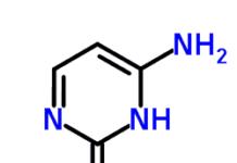 Cytosine Nucleic acid