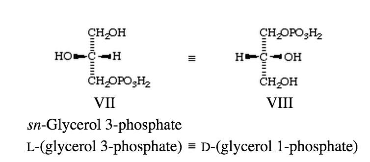e1bOj Lipid definition, classification, functions and lipid profile