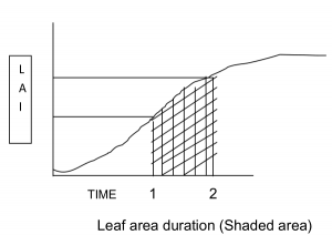 LAI Chart